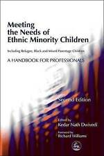 Meeting the Needs of Ethnic Minority Children--Including Refugee, Black and