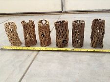 "3 Pcs 4"" Organic Cholla Wood *Air Plants * Orchids * Fish*Crafts*Cleaned Boild#3"