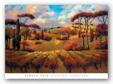 Evening Vineyard Teresa Saia Art Print 24x36