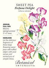 Perfume Delight Sweet Pea Seeds - 3 grams - Lathyrus
