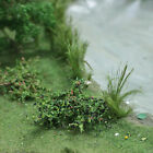 Free Shipping 60 Blackberries Plants HO Scale 5/8 inches Tall # 70123