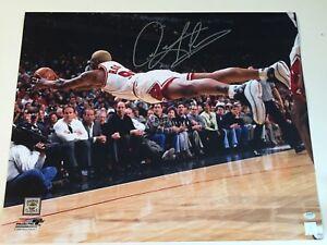 Dennis Rodman Autographed Signed 16x20 Photo - Schwartz
