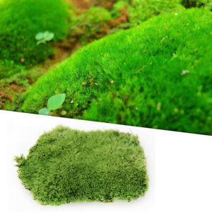 Artificial Micro Moss Aquarium Plant Landscape Lawn Fish Tank Green Carpet Decor