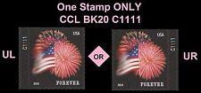 US 4869 Star-Spangled Banner forever plate single C1111 CCL BK20 MNH 2014
