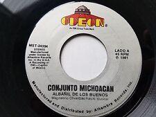 """CONJUNTO MICHOACAN - Albanil de Los Buenos / Las Holgazanas LATIN NORTENO 7"""""""