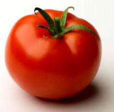 Tomato MONEYMAKER HERITAGE TOMATO SEEDS 25+ seeds Heirloom