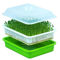 Seed Sprouter Tray BPA Free PP Soil-Free Wheatgrass Soybean Grow Hot US Stock