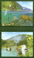 Azoren 2009 - Ente Krickente Graureiher - Tintenfisch Muräne - Block 39 + 40 **