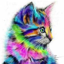 DIY 5D Diamond Mosaic Colorful Cat Painting Kit Punto Croce Ricamo Casa WQ