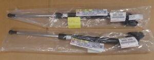 OEM TOYOTA 4RUNNER REAR DOOR LIFT CYLINDERS  FITS 2003-2004  (BOTH INCLUDED)