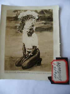 OLD EARLY ANTIQUE PHOTO AUSTRALIAN PAINTED ABORIGINAL MAGIC MAN AUSTRALIA