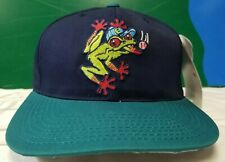 Everett Aquasox snapback cap hat minor league baseball Outdoor Cap NWT NEW vtg