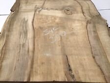 Sycamore Timber,sycamore Slab,sycamore Wood