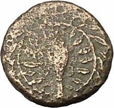 Elaia in Asia Minor 4th-3rdCentBC Ancient Greek Coin Athena Corn-grain  i46039