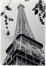1959 Vintage Photo Portrait Centenary Celebration of Eiffel Tower Paris France