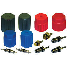 A/C System Valve Core and Cap Kit Santech Industries- MT2906