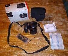 Sony dsc h300