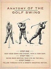 Anatomy Of The Golf Swing steel sign 200mm x 150mm (og)