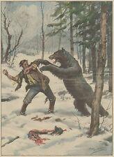 K1284 Lotta tra Orso e cacciatore in foresta Polonia - Stampa - 1934 old print