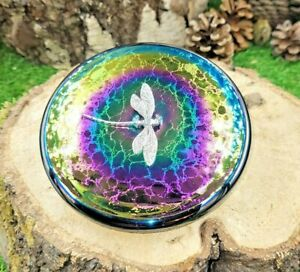 Neo Art Glass iridescent rainbow disc paperweight silver dragonfly by K.Heaton