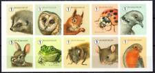 Belgium 2020 Garden Visitors, Fauna, Birds, Owls, Hedgehogs, Squirrels MNH**