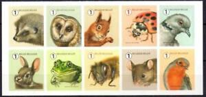 Belgium 2020 Garden Visitors, Fauna, Birds, Owls, Hedgehogs, Squirrels MNH**