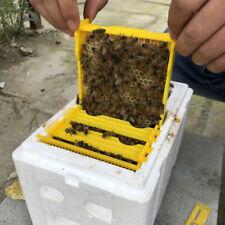 Abfangclip Weisel Königinnen fangen Bienen Käfig Kunststoff