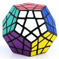 Shengshou Megaminx Dodecahedron - Magic Cube  Puzzle - Black