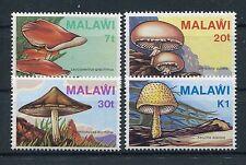 Malawi 441/44 postfrisch / Pilze .........................................1/1971