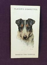 *Advertising Tobacco Dog Card PLAYER'S CIGARETTES Smooth Fox Terrier