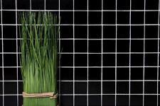 Mosaïque carreau céramique noir mat cuisine bain mur sol 16-0311_b   1 plaque