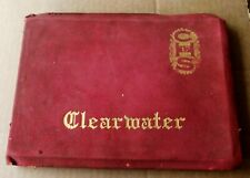 Clearwater Florida High School Yearbook From 1917