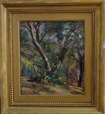 """PITTORE, ZARDO ALBERTO(Padova 1876 - Firenze 1959) """"BOSCO """""""