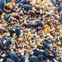 Bird Seed Mix Millet Sunflower Seeds Cracked Corn Milo