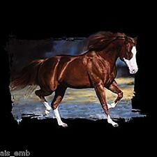 White Face Bay Horse HEAT PRESS TRANSFER for T Shirt Sweatshirt Tote Fabric 242c
