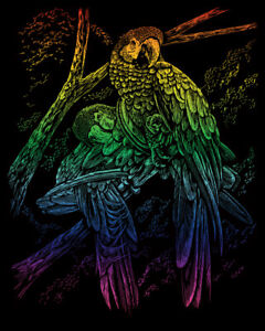 Kratzbild Kratzbilder tropische Vögel Rainbow Neu