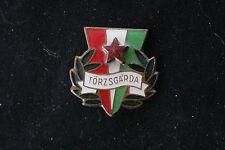 Hungary Hungarian Bronze Torzsgarda badge Pin Communist Soviet Labor