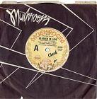 "CHEEK - SO MUCH IN LOVE - RARE 7"" 45 VINYL RECORD - 1977"