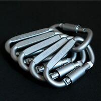 6 Stück Schlüsselring Alu Karabinerhaken Karabiner Schnapphaken Schraubkarabiner