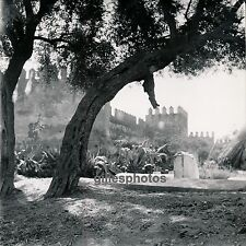 FEZ c. 1950 - Remparts Maroc - DIV1017