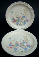 TWO Poole Pottery Springtime Pattern Side or Bread Size Plates 17cm Look in VGC