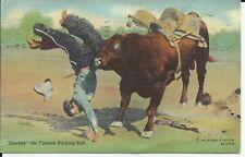 Sharkey the Famous Bucking Bull Doubleday Cowboy Western Rodeo Linen Postcard