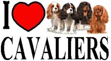 I LOVE CAVALIERS Car Sticker By Starprint - Featuring the Cavalier King Charles