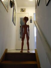 ALIEN ROSWELL Taille réelle. Life size movie prop