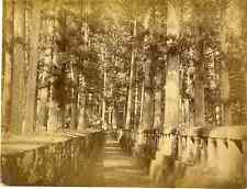Japon, Scenery, Wall and path through forest  Vintage albumen print, Japan