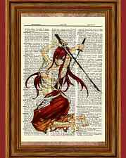 Fairy Tail Erza Anime Dictionary Art Print Poster Picture