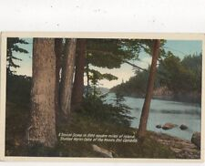 Studded Water Lake Of The Woods Ontario Vintage Postcard Canada 514a