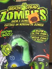 Glow in the Dark ! Zombie Arm Brain Dead Zombies Grow A Zombie Part Monster Toy