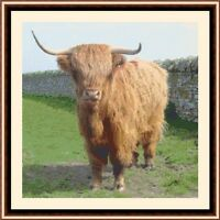 Highland Cow 04 CROSS STITCH KIT