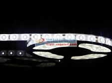 SuperBright 5M Nature White 5630 SMD 300LED Flexible Strip Waterproof IP65 DC12V